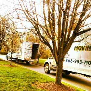 Moving & Storage Services Interlaken